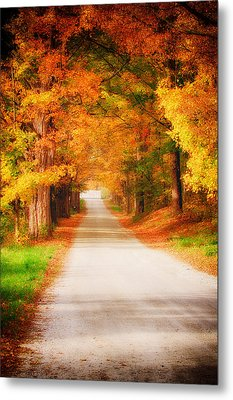 A Walk Along The Golden Path Metal Print by Jeff Folger
