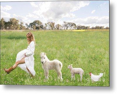A Walk In The Country Metal Print by Linda Lees
