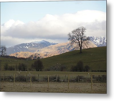 Metal Print featuring the photograph A Walk In The Countryside In Lake District England by Tiffany Erdman