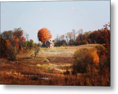 A Walk In The Meadow Metal Print by Trina  Ansel