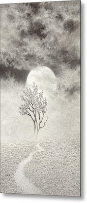 A Walk In The Moonlight Metal Print by Mark  Reep