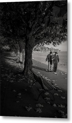 Metal Print featuring the photograph A Walk In The Park by Antonio Jorge Nunes