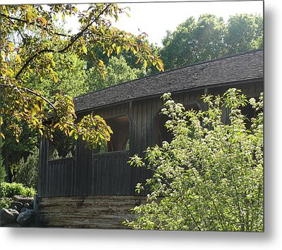 Metal Print featuring the photograph A Walk In The Park by Tiffany Erdman