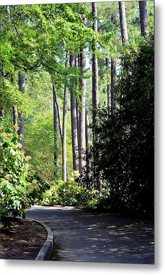 A Walk In The Shade Metal Print by Maria Urso