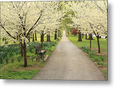 Metal Print featuring the photograph A Walk In Tower Grove by Scott Rackers
