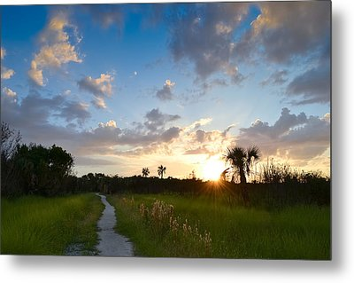 Metal Print featuring the photograph A Walk With You... by Melanie Moraga