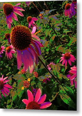 Metal Print featuring the photograph A Warm Spring by Diane Miller