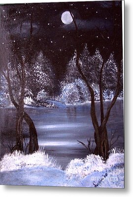 A Winter Night Metal Print by Lucia Grilletto