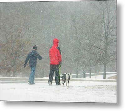 A Winter Walk In The Park - Silver Spring Md Metal Print by Emmy Marie Vickers