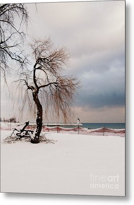 A Winter's Day On Lake Ontario Canada Metal Print by Avis  Noelle