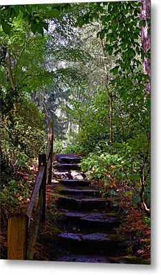 A Wooded Path Metal Print by Anthony Baatz