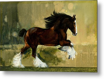 Clydesdale Stallion Metal Print by Don  Langeneckert