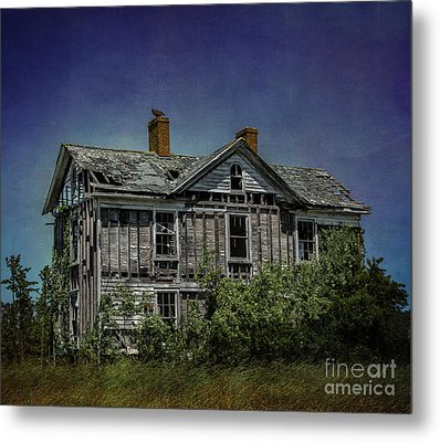 Abandoned Dream Metal Print by Terry Rowe