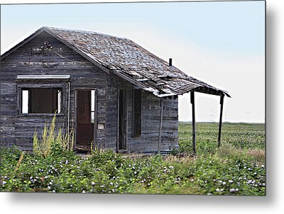 Abandoned Shack In Cotton Field Metal Print by Linda Phelps