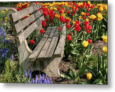 Abducted Park Bench Metal Print