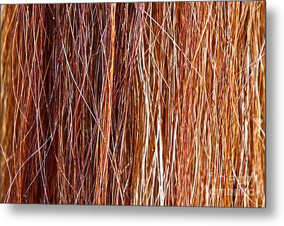 Ablaze Metal Print by Michelle Twohig