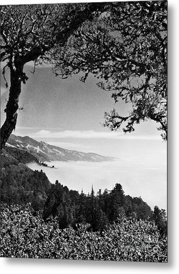 Metal Print featuring the photograph Above Nepenthe In Big Sur by Joseph J Stevens