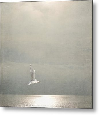 Above The Sea Metal Print by Sally Banfill