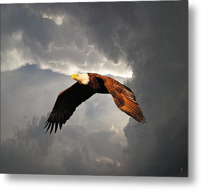 Above The Storm Metal Print