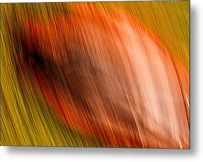 Abstract #5 Metal Print