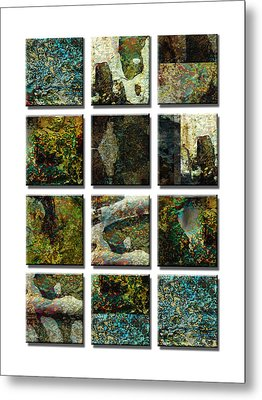 abstract - art- Twelve Metal Print by Ann Powell