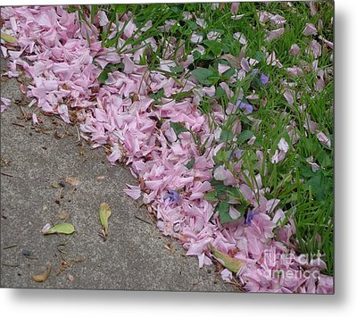Abstract Diagonal Pink Petals Metal Print by Christina Verdgeline