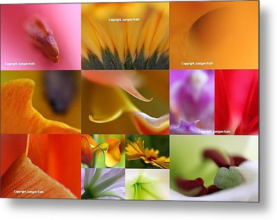 Abstract Fine Art Flower Photography Metal Print by Juergen Roth