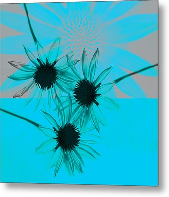 abstract - flowers - Flower Collage  Metal Print by Ann Powell