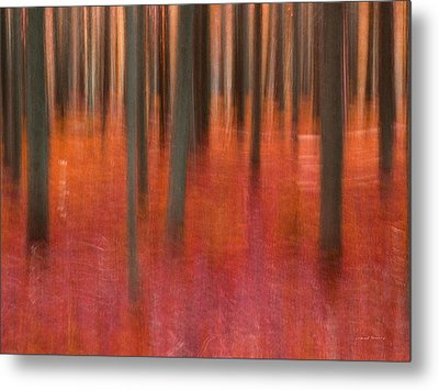 Abstract Forest 2 Metal Print by Leland D Howard