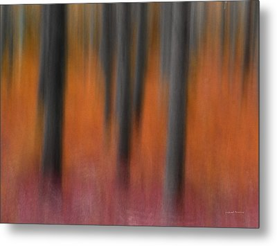 Abstract Forest 4 Metal Print by Leland D Howard