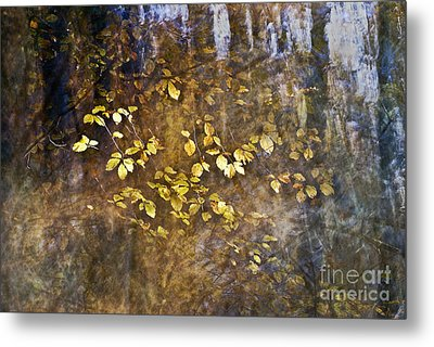 Abstract Forest Metal Print by Yuri Santin