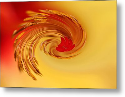 Metal Print featuring the photograph Abstract Swirl Hibiscus Flower by Debbie Oppermann