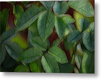 Abstract Leaves Metal Print by Ronald T Williams