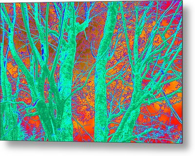 Abstract Maplei Metal Print by Kathy Sampson