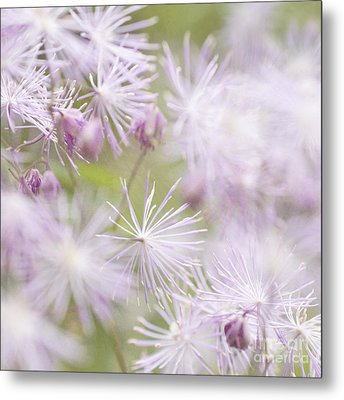 Abstract Nature Pink Burst Metal Print by Circe Lucas