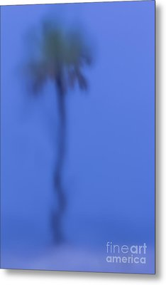 Abstract Palm Metal Print by Marvin Spates