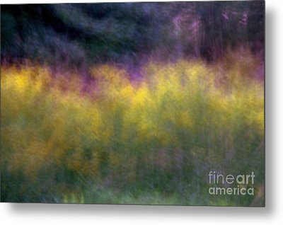 Abstract Viii Goldenrod Metal Print