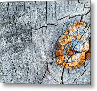 Abstract Woodgrain Upclose 6 Metal Print