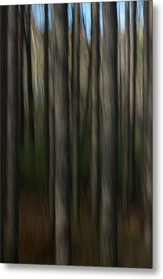 Metal Print featuring the photograph Abstract Woods by Randy Pollard