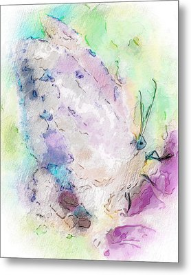 Abstracted Butterfly Metal Print by Jill Balsam