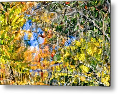 Abstracts Of Nature Metal Print by Frozen in Time Fine Art Photography