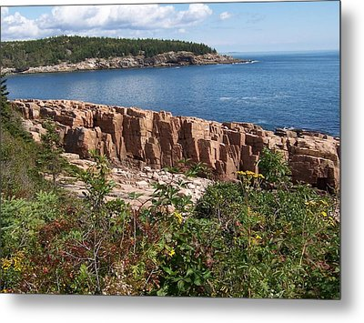 Acadia Maine Metal Print by Catherine Gagne
