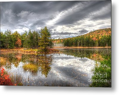 Acadia With Autumn Colors Metal Print