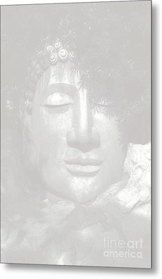 Access To Insight  Metal Print by Vineesh Edakkara