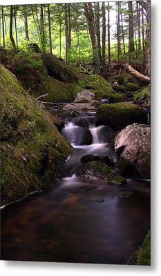 Accidental Discovery Metal Print by Greg DeBeck
