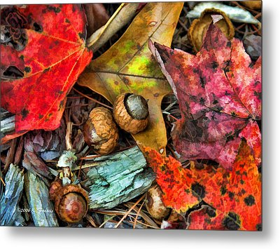 Metal Print featuring the photograph Acorns And Leaves by Kenny Francis