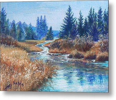 Across The Brook Metal Print