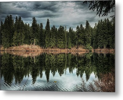 Across The Lake Metal Print by Belinda Greb