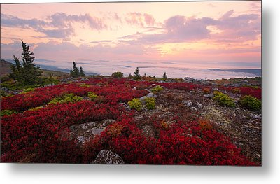 Metal Print featuring the photograph Across The Sea by Bernard Chen