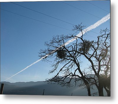 Across The Valley And Through The Trees Metal Print by Brooks Garten Hauschild